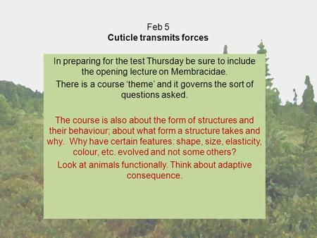 Feb 5 Cuticle transmits forces In preparing for the test Thursday be sure to include the opening lecture on Membracidae. There is a course 'theme' and.