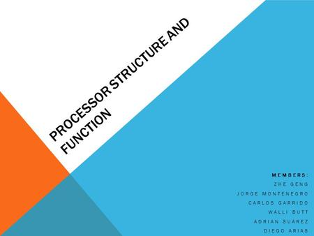 PROCESSOR STRUCTURE AND FUNCTION MEMBERS: ZHE GENG JORGE MONTENEGRO CARLOS GARRIDO WALLI BUTT ADRIAN SUAREZ DIEGO ARIAS.