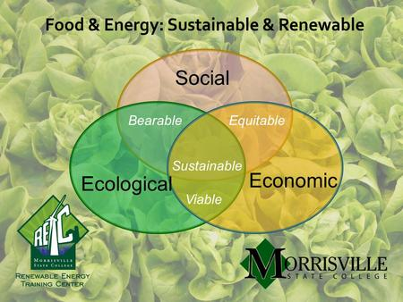 Food & Energy: Sustainable & Renewable