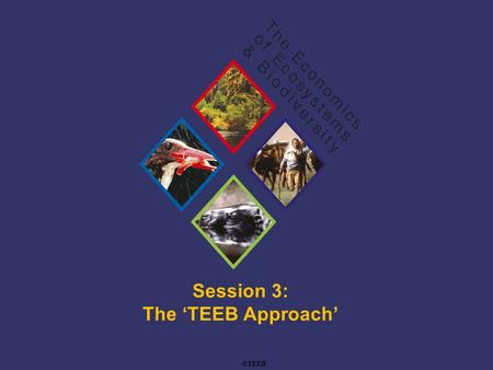 TEEB Training Session 3: The 'TEEB Approach' ©TEEB.