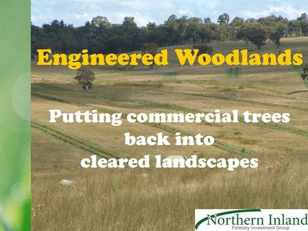 Engineered Woodlands Putting commercial trees back into cleared landscapes.