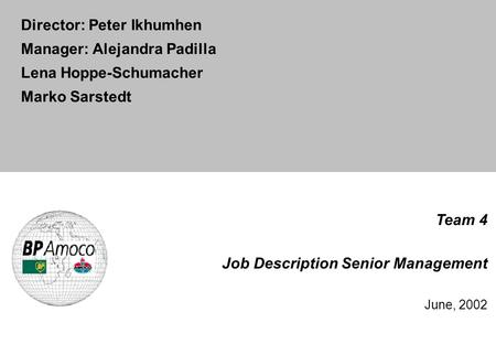 Team 4 Job Description Senior Management June, 2002 Director: Peter Ikhumhen Manager: Alejandra Padilla Lena Hoppe-Schumacher Marko Sarstedt.