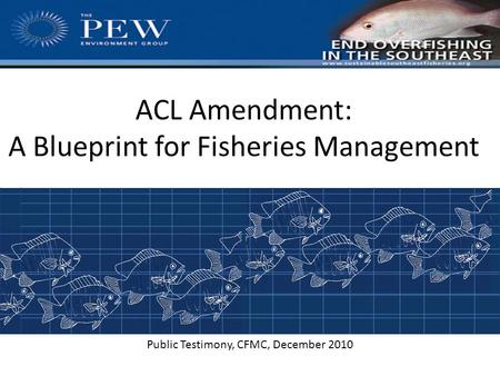 ACL Amendment: A Blueprint for Fisheries Management Public Testimony, CFMC, December, 2010 Public Testimony, CFMC, December 2010.