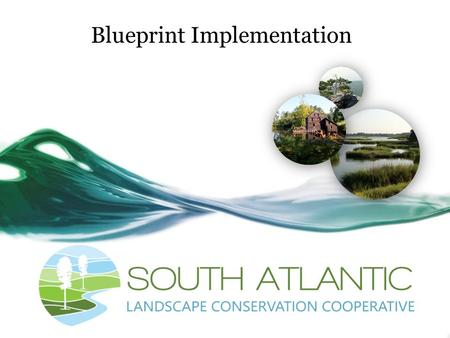 "Blueprint Implementation. Ensuring effective implementation of the Blueprint ""How do we link Blueprint products with organizational policies and activities?"""