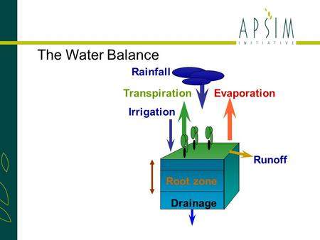 TranspirationEvaporation Rainfall Runoff Drainage Irrigation Root zone The Water Balance.