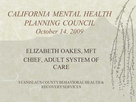 1 CALIFORNIA MENTAL HEALTH PLANNING COUNCIL October 14, 2009 ELIZABETH OAKES, MFT CHIEF, ADULT SYSTEM OF CARE STANISLAUS COUNTY BEHAVIORAL HEALTH & RECOVERY.