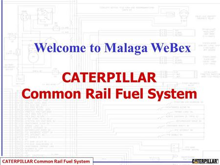 Welcome to Malaga WeBex Common Rail Fuel System