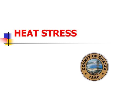 HEAT STRESS. Prepared by Paul Young 2 Heat Sources Temperature Humidity Radiant Heat Air Velocity All of these have an effect on the human body and the.