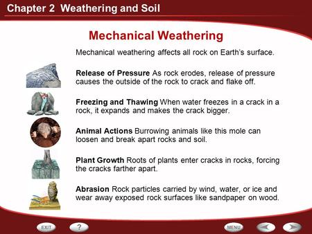 Chapter 2 Weathering and Soil Mechanical Weathering Mechanical weathering affects all rock on Earth's surface. Release of Pressure As rock erodes, release.