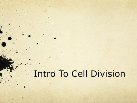 Intro To Cell Division. What else do cells do? Repair Growth Reproduction Asexual Sexual.