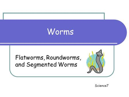 Worms Flatworms, Roundworms, and Segmented Worms Science7.