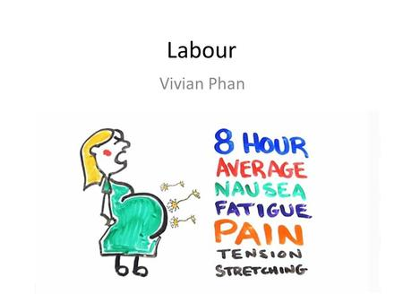 Labour Vivian Phan. 3 stages of labour 1. Creation of birth canal – Start: sudden increase in frequency & force of contractions (hormones?) – Finish:
