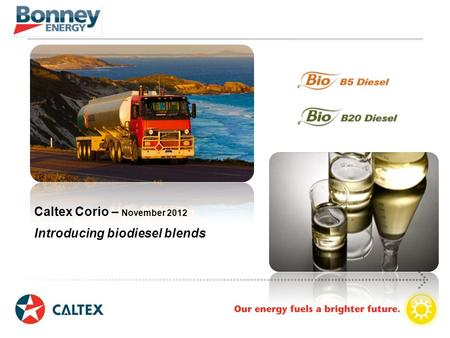 Caltex Corio – November 2012 Introducing biodiesel blends.