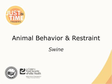 Animal Behavior & Restraint Swine. BEHAVIOR Just In Time Training Animal Behavior and Restraint: Swine.
