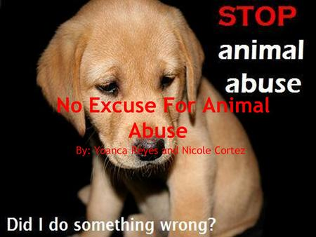 No Excuse For Animal Abuse By: Yoanca Reyes and Nicole Cortez.