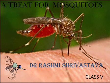 A TREAT FOR MOSQUITOES DR RASHMI SHRIVASTAVA CLASS V.
