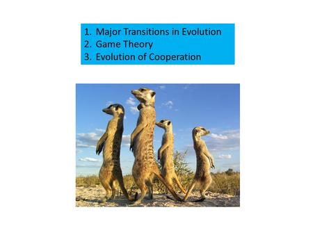 1.Major Transitions in Evolution 2.Game Theory 3.Evolution of Cooperation.