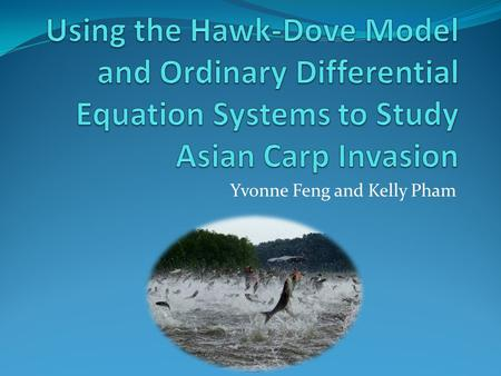Yvonne Feng and Kelly Pham. Outline Background Motivation Introduction to our models Different Invasion Problems Limitations of our models Future Work.