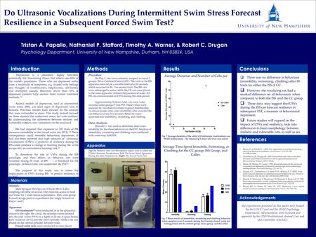 Do Ultrasonic Vocalizations During Intermittent Swim Stress Forecast Resilience in a Subsequent Forced Swim Test?  There was no difference in behaviour.