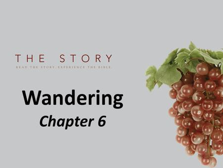 Wandering Chapter 6. How do you respond to hardship?