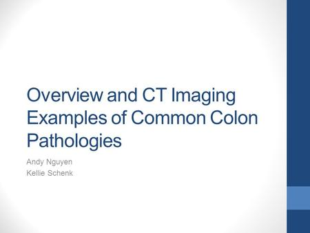 Overview and CT Imaging Examples of Common Colon Pathologies