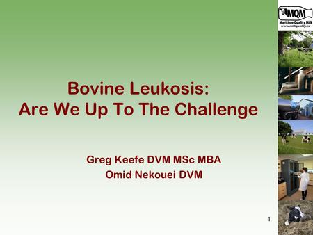 Bovine Leukosis: Are We Up To The Challenge Greg Keefe DVM MSc MBA Omid Nekouei DVM 1.