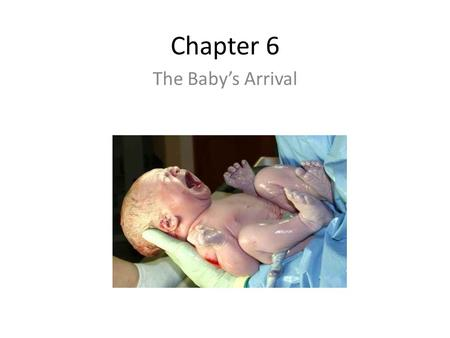 Chapter 6 The Baby's Arrival. Labor & Birth The Beginning of Labor – Lightening: The baby settles deep in the uterus Less pressure on the upper abdomen.