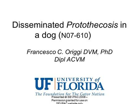 Disseminated Protothecosis in a dog ( N07-610 ) Francesco C. Origgi DVM, PhD Dipl ACVM Presented at SEVPAC 2008 – Permission granted for use on SEVPAC.