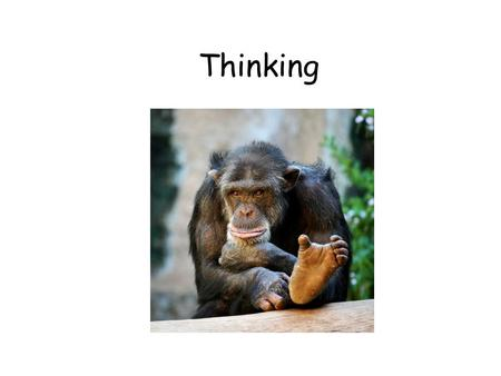 Thinking. Cognition Cognition – all mental activities associated with thinking, knowing, remembering and communicating – Example: Thinking how to solve.