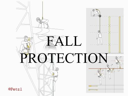 FALL PROTECTION. Overview Identify fall hazardous areas Describing potential fall hazards How appropriate portable and extension ladders are used.