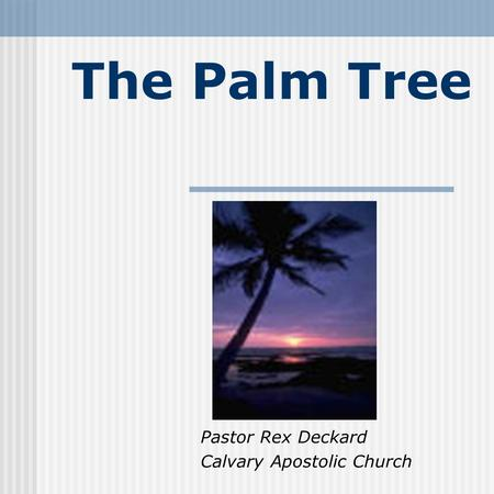 The Palm Tree Pastor Rex Deckard Calvary Apostolic Church.