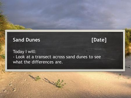 Sand Dunes[Date] Today I will: - Look at a transect across sand dunes to see what the differences are.