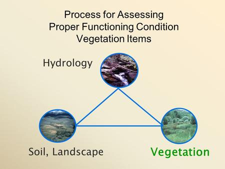 Vegetation Soil, Landscape Hydrology Process for Assessing Proper Functioning Condition Vegetation Items.