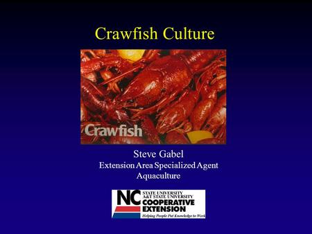 Crawfish Culture Steve Gabel Extension Area Specialized Agent Aquaculture.