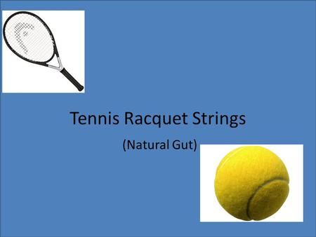 Tennis Racquet Strings (Natural Gut). How It Is Made Natural gut's main source is a cow intestine called serosa. It is long and has great tensile strength.