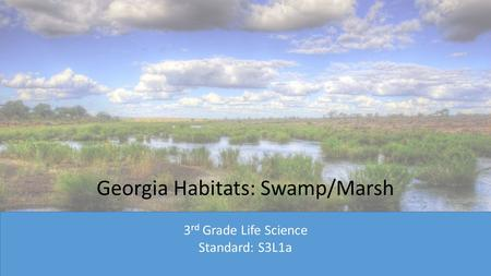 Georgia Habitats: Swamp/Marsh