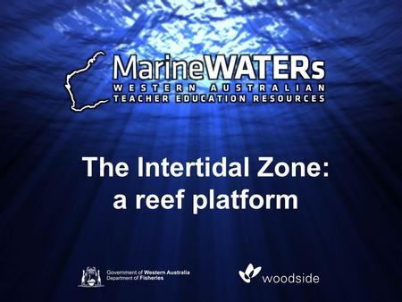 The Intertidal Zone: a reef platform. The intertidal zone, also known as the littoral zone, is that area between high tide and low tide. It can be divided.