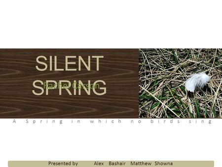 SILENT SPRING Rachel Carson A Spring in which no birds sing Presented by Alex Bashair Matthew Showna.