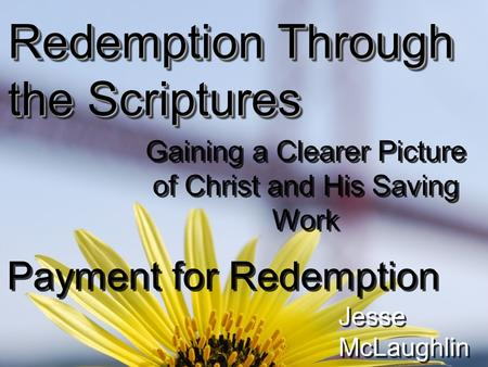Redemption Through the Scriptures Gaining a Clearer Picture of Christ and His Saving Work Payment for Redemption Jesse McLaughlin.