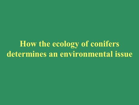How the ecology of conifers determines an environmental issue.