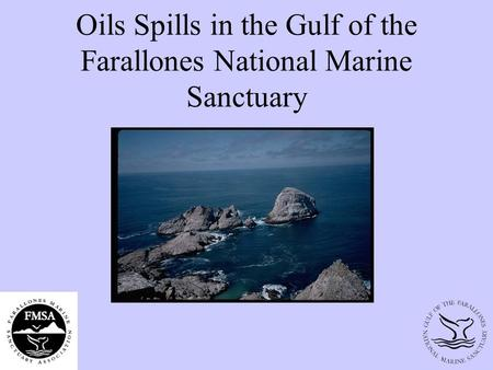 Oils Spills in the Gulf of the Farallones National Marine Sanctuary.
