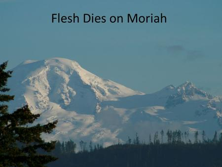 Flesh Dies on Moriah. Gen 22:1 And it came to pass after these things, that God did tempt Abraham, and said unto him, Abraham: and he said, Behold, here.