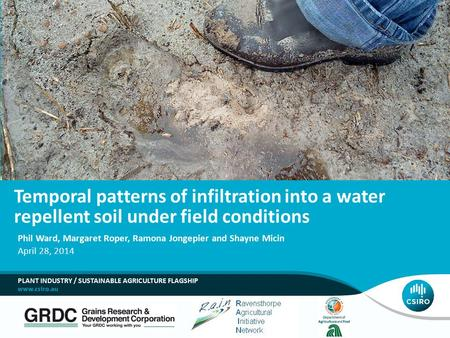 Temporal patterns of infiltration into a water repellent soil under field conditions Phil Ward, Margaret Roper, Ramona Jongepier and Shayne Micin April.