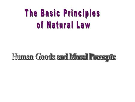 Part I - Law Law Divine law Natural law Civil law Canon law There are different kinds of law.