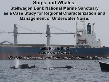 Ships and Whales: Stellwagen Bank National Marine Sanctuary as a Case Study for Regional Characterization and Management of Underwater Noise. Leila Hatch,
