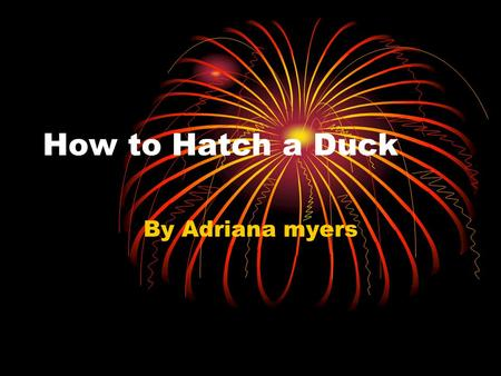 How to Hatch a Duck By Adriana myers. How to Hatch a Duck Next let the heat suclate in the incubater. Keep it to 99 digres. Then put the egg's in the.