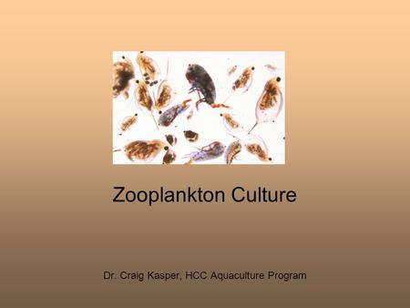 Dr. Craig Kasper, HCC Aquaculture Program