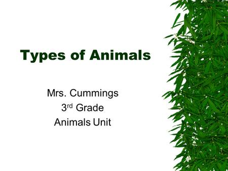 Types of Animals Mrs. Cummings 3 rd Grade Animals Unit.