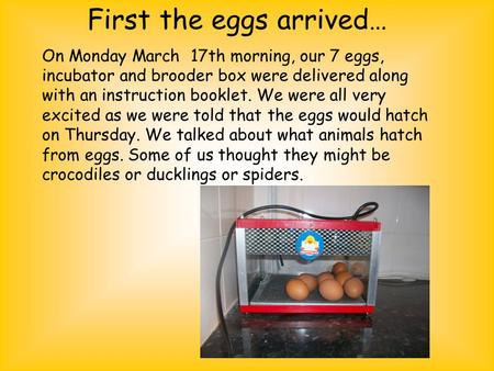 First the eggs arrived… On Monday March 17th morning, our 7 eggs, incubator and brooder box were delivered along with an instruction booklet. We were all.