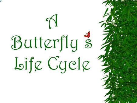 A Butterfly s Life Cycle Understand the life cycle of a butterfly. Objectives 1.) Egg Stage 2.) Larva Stage 3.) Pupae Stage 4.) Adult Stage Know the.